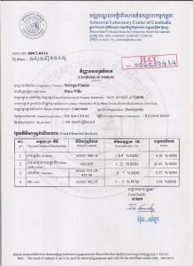 Baca-Villa-Chemical-test-report-Pasteur